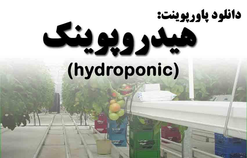 دانلود پاورپوینت هیدروپونیک و استفاده از آن در گلخانه