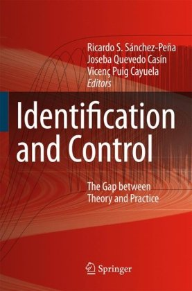 Identification and control: the gap between theory and practiceq