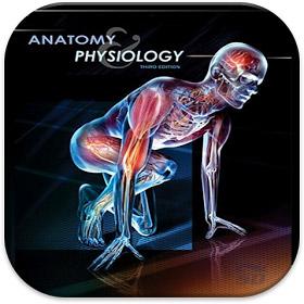دانلود پاورپوینت آناتومی و فیزیولوژی عضلات