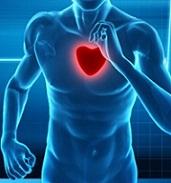 دانلود مقاله اثرات ورزش بر بیماری های قلبی((word