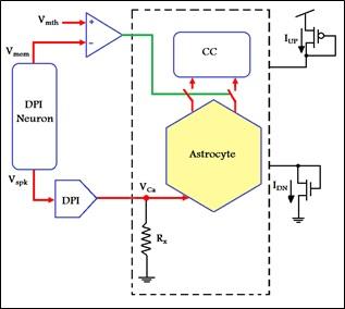 پروژه ارشد الکترونیک با عنوان طراحی و شبیه سازی مدار یادگیری بر پایۀ اسپایک با مدل نورون I&F و مدار آستروسیت به صورت Word در 111 صفحه