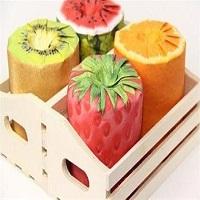 مطالعات امکان سنجی مقدماتی طرح تولید دسرهای آماده میوه