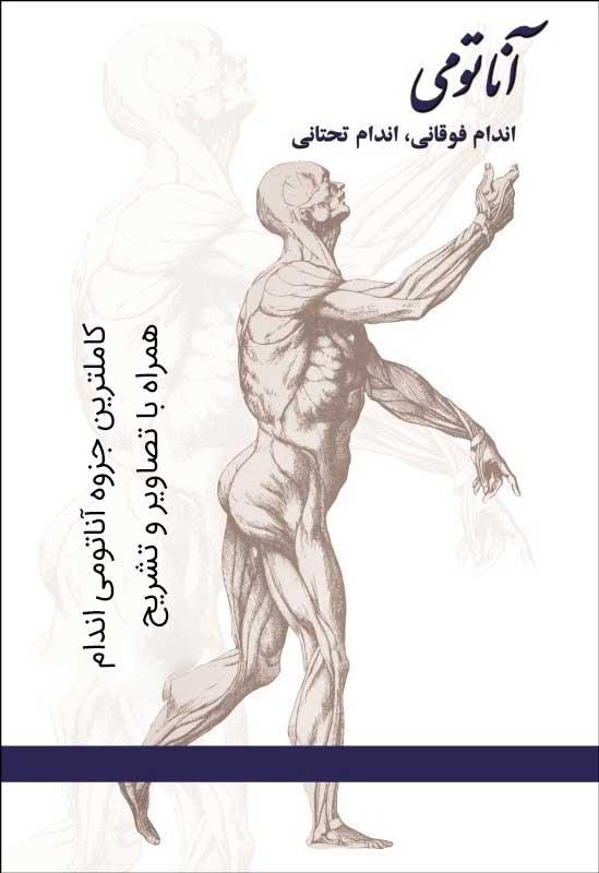 جزوه کامل آناتومی اندام همراه با تصاویر