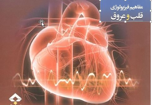 دانلود جزوه فیزیولوژی و آناتومی قلب وعروق انسان (پاورپوینت)