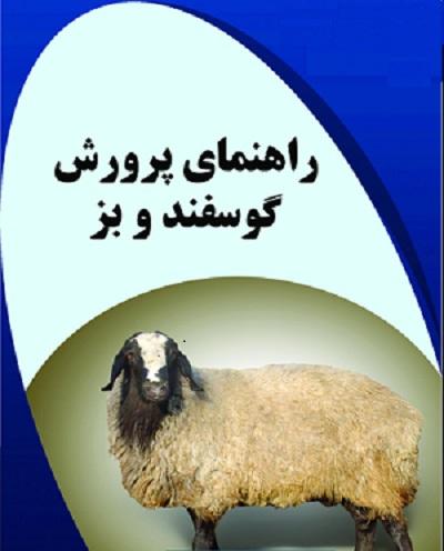دانلود مقاله راهنمای پرورش گوسفند و بز pdf ( مجموعه  آموزشی کامل )