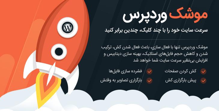 دانلود رایگان افزونه بهینه سازی و افزایش سرعت سایت وردپرس | WP Rocket