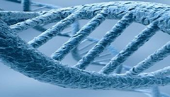 دانلود پاورپوینت الگوریتم های ژنتیک در64 اسلاید