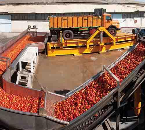 دانلود پروژه کارآفرینی تاسیس کارخانه تولید رب گوجه فرنگی (با قابلیت ویرایش و دریافت فایل Word ورد)تعداد صفحات 33