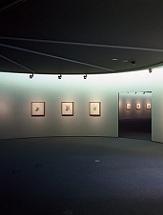 دانلود مقاله معماری موزه